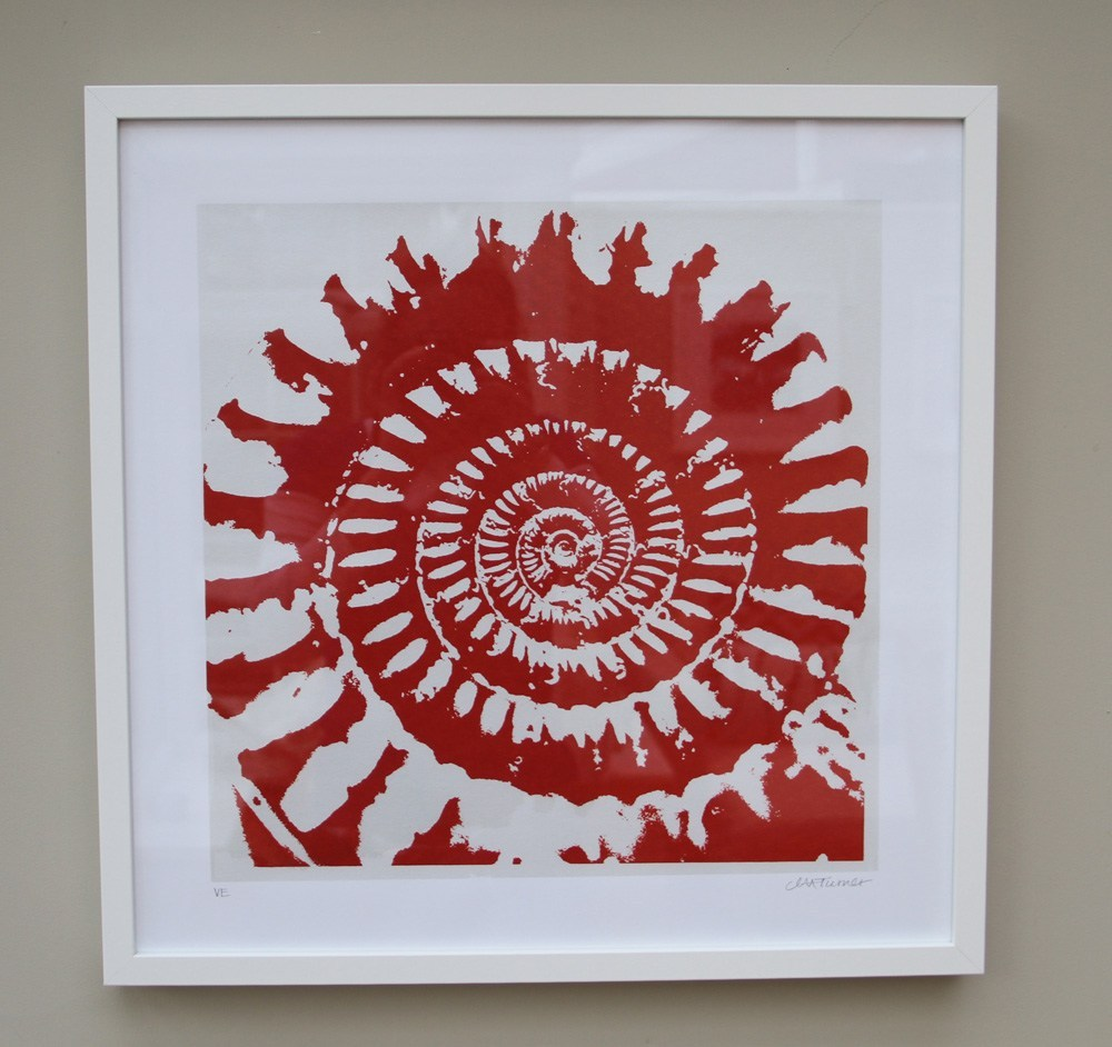Ammonite-silver-framed_web