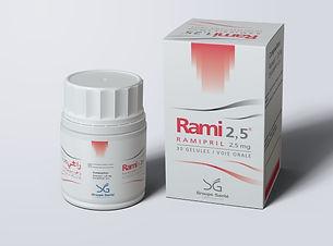 RAMI2.5.jpg