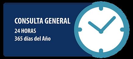 Consulta-General-H.png