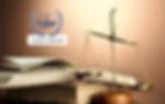 Partner Visa Refusal