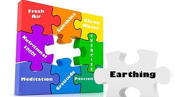 Earthing puzzle_edited.jpg
