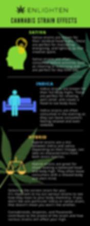 Cannabis Strain Effects & Consumption Infographic - Enlighen Alasa