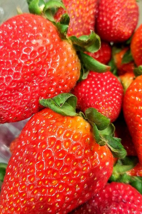 Quart  Strawberries