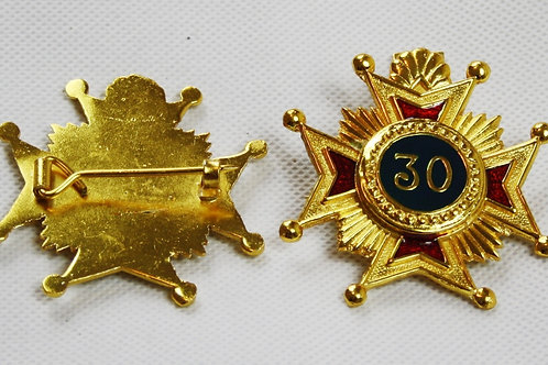 30th Degree Brooch