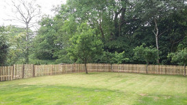 3' picket fence and lawn tufing
