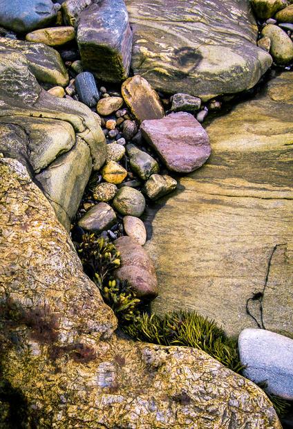 Maine shore2 (1 of 1).jpg