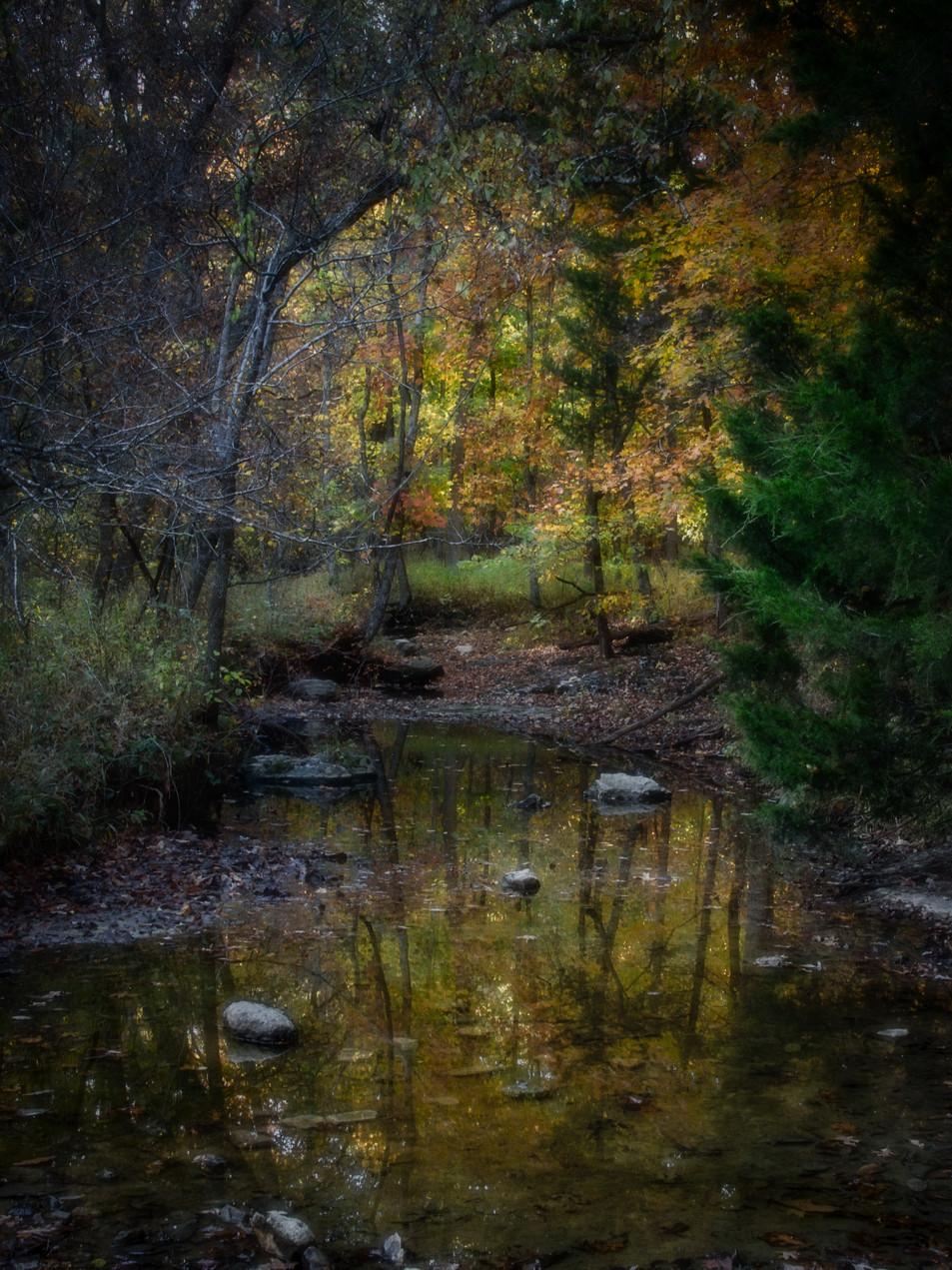 Autumn Creek .jpeg
