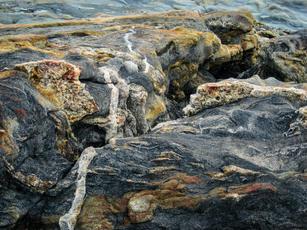 Maine shore (1 of 1).jpg