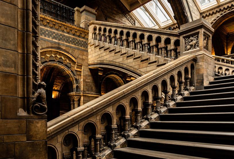 web Nat Hist staircase.jpeg