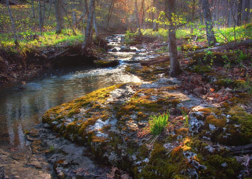 Baskett creek 21 web.jpg