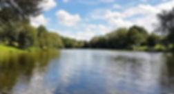Traumsee_Tageskarten-Bild-420x228_edited