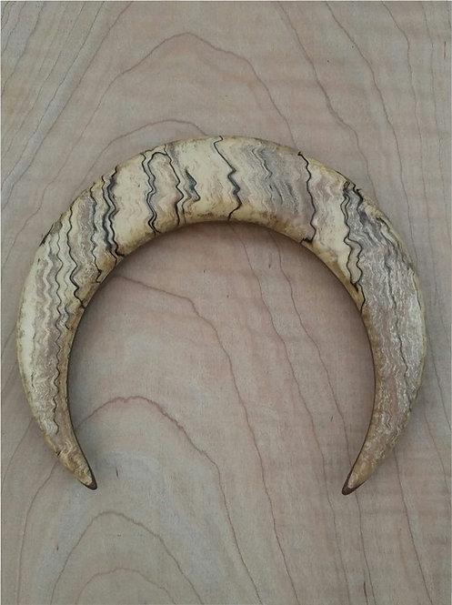 4 3/4 inch Ketylo Crescent Moon Hairfork