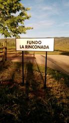 Fundo La Rinconada