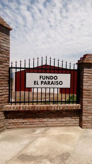 Fundo El Paraiso