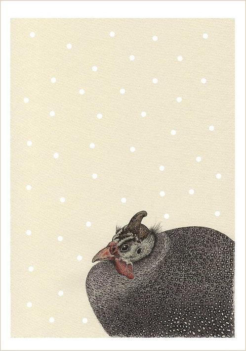 Numida meleagris Snowfall