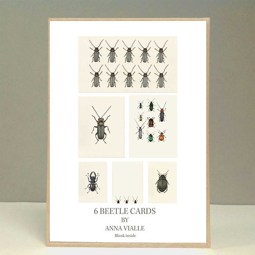 Beetles Card Pack