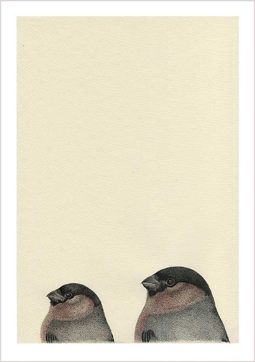 Bullfinches x 2