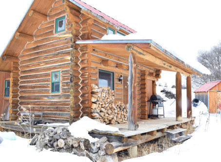 The Little Cabin Looking for Love