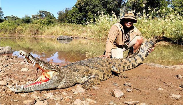 Beautiful Crocodile hunted by Rico! What