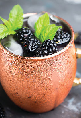 Winter Berry Mule_102019.jpg