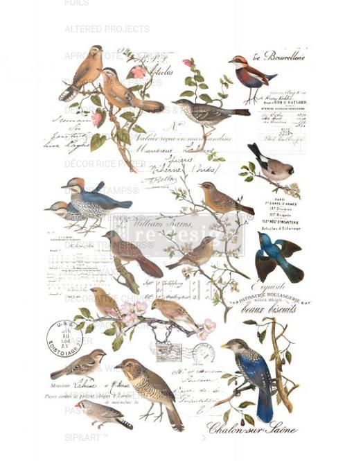 POSTAL BIRDS
