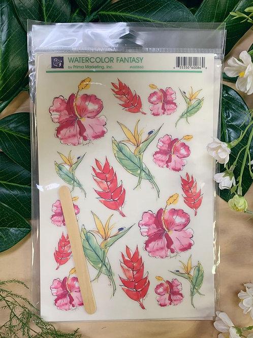 Watercolor Fancy #600860