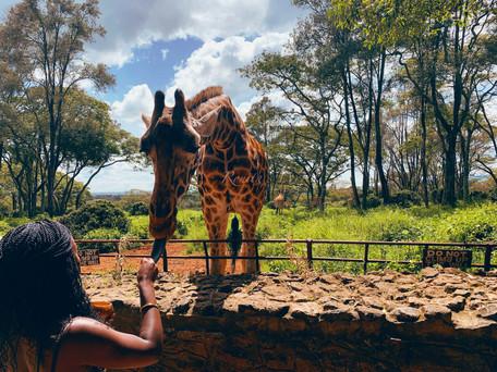 The Kenya Edit (This World 003)