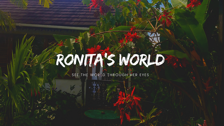 Ronita's World.png