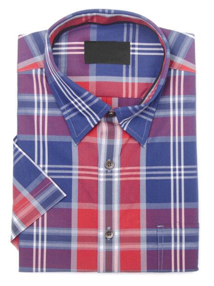 Camisa(2)