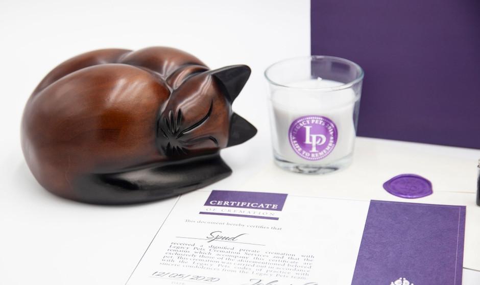 Legacy Pets Package With Sleeping Cat 2.jpg