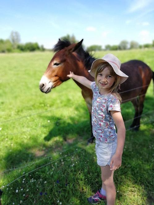 Séance individuelle avec un âne (1h à partir de 2.5 ans)