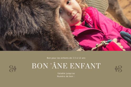 Bon âne enfant - 140