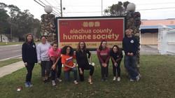 Spring Humane Society