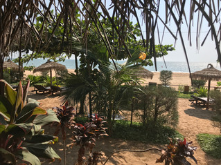 Scribble Escapes to Goa, India