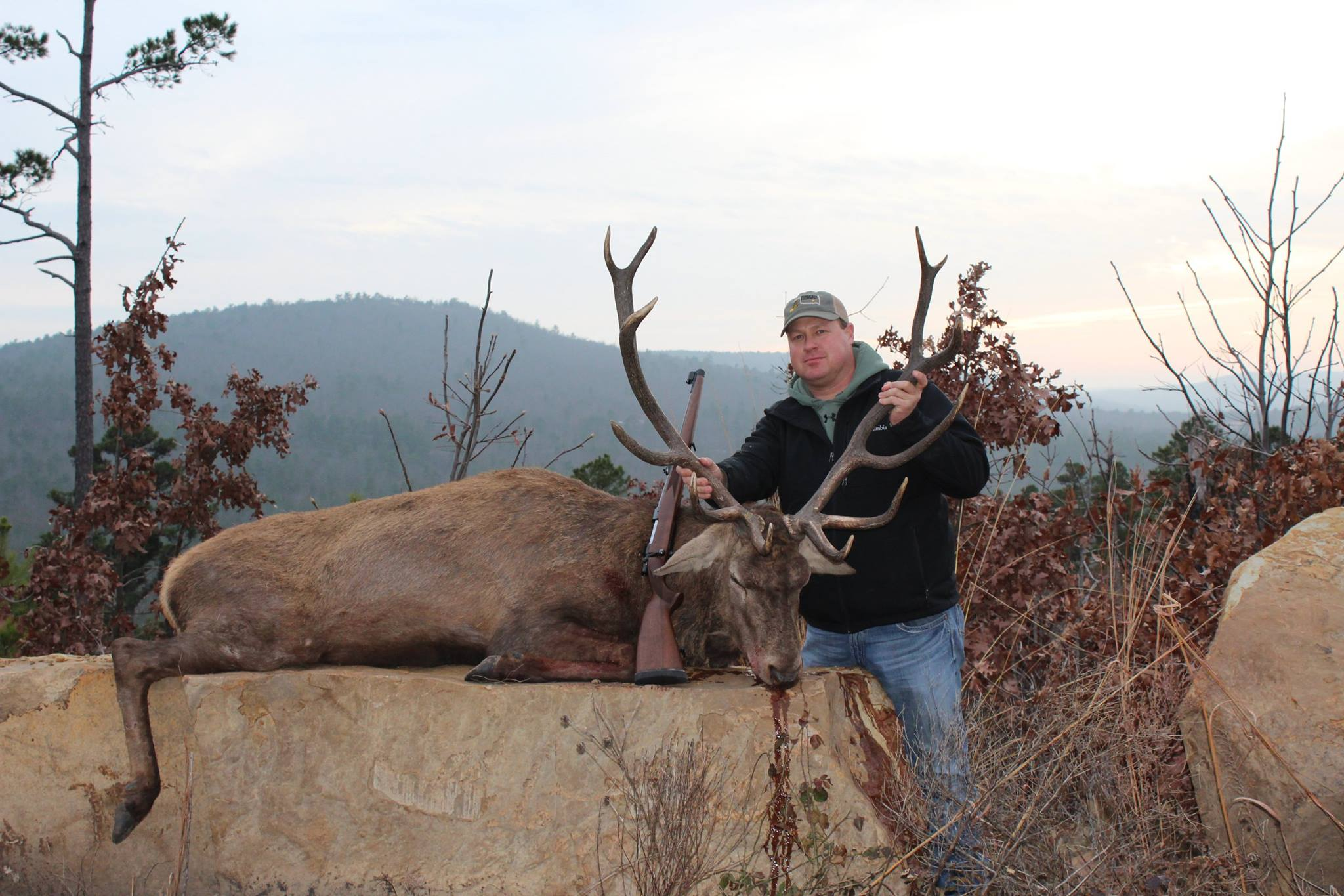 Heflin Ranches Red Stag Oklahoma