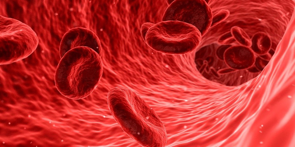 Blood Circulation   Health Regulation