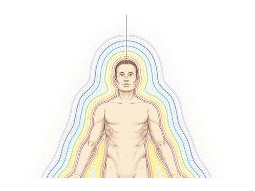 The 7 Bodies Healing Program