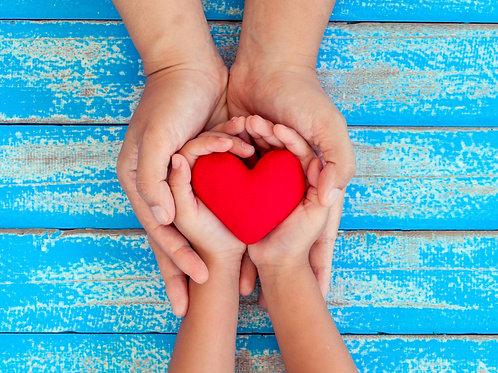 Blueprint Healing Program