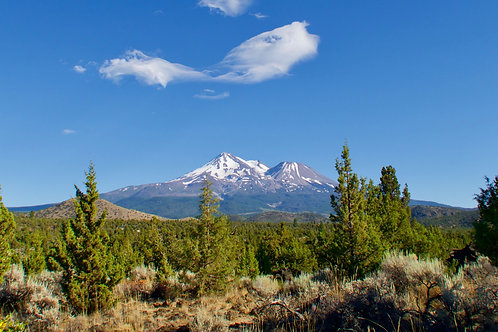 Mt. Shasta 2020: Become the Mother & the Father you always wanted to be