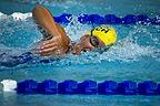swimming-78112.jpg