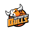 Bulls-logo-without-background.png