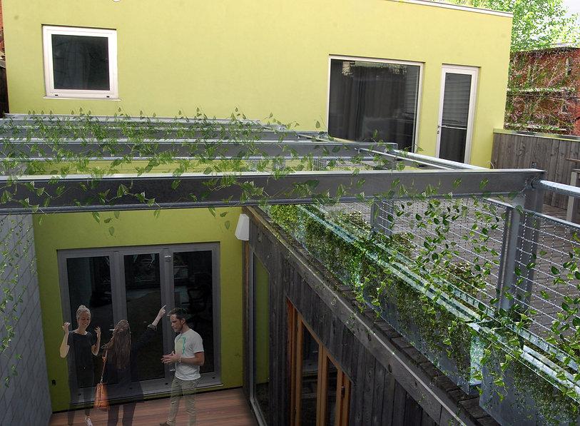 rendu, cour intérieure, acier, galvanisé, plante grimpante, montréal, cour, végétation