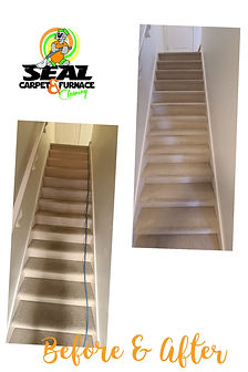 Seal Carpet Before & After Stairs.JPG