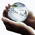 Environment Friendly Carpet Cleaning