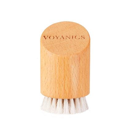 Facial Dry Brush
