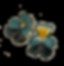 wild-pansies-herbin-alchemy.png