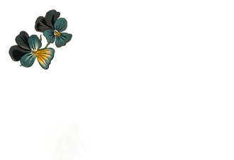 wild-pansies-herbin-alchemy-sign-up-newsletter-2.png