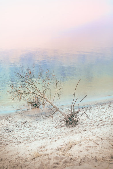 pastel impressionism collection