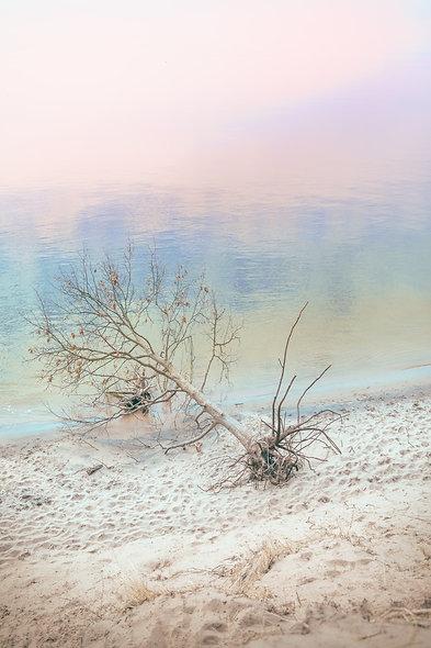 pastel impressionism no.1