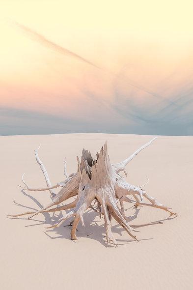Sand Dreams Print no.1